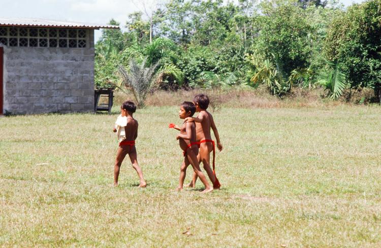 Yanomami children, Alto Ocamo 1985 ©cvb